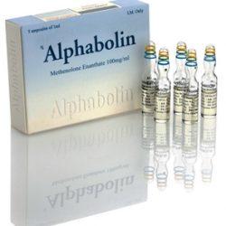 Alphabolin_amps