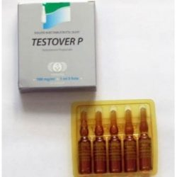 testover-p-500x500